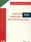 14 - Naucke Hassemer Luderssen - Principales Problemas de la Prevencion General