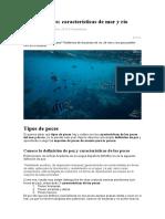 5.tipos de peces