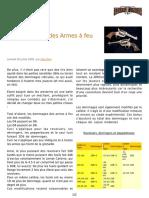 DL FR - Dommages des Armes _ feu