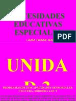 7 Necesidades Educativas Especiales CLASES LCE 2 LCE 3 6-OCT-2021