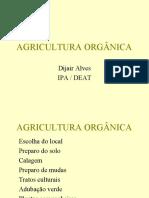 AGRICULTURA ORGÂNICA Preparo do solo e plantio curso I Técnicos