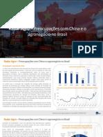 Radar Agro - Preocupações Com a China e o Agronegócio No Brasil - ItauBBA