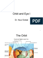 The_Orbit_and_Eye_I