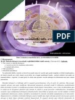 2. Leziunile (Acumulările) Intra- Şi Extracelulare Reversibile._0