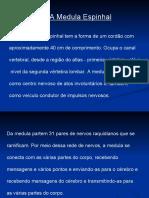 Aula_de_Neuro_II