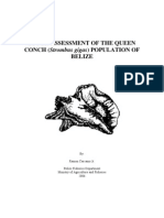 Stock Assessment of the Queen Conch Population of Belize