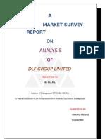 Dlf Group Market Survey Report