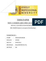 1040070143_TERM PAPER