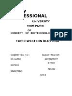 1040070145_TERM PAPER