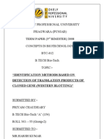 1040070159_Revised TERM  PAPER
