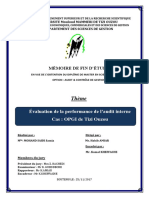 Evaluation de La Performance d'Audit Interne ACG