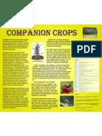 Companion Crops Poster