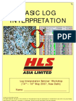 BASIC LOG INTERPRETATION_HLS