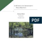 Wetland Hydrologic Assessment