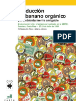 Produccion Banano Organico