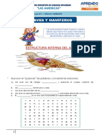 AVES  Y MAMIFEROS (1)