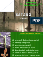 Botani - Morfologi Batang