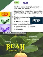 Botani - Morfologi Buah 1
