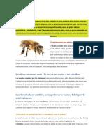Bulletin d'informations abeille a