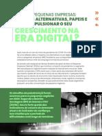 Micro e pequenas empresas_quais as alternativas, papéis e como impulsionar o seu crescimento na era digital