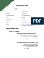CV RICARDO LANDAZURI