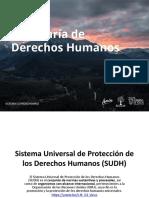 Sistema Universal de Protección de Los Derechos Humanos