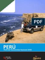 Publicacion Perfil  Vacacionista Nacional 2009