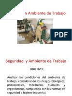 Seguridad y Ambiente de Trabajo