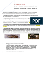 ACTIVIDAD DE CLASE EVOLUCIÓN BIOLÓGICA