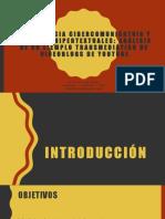 COMPETENCIA CIBERCOMUNICATVIA Y LECTURAS HIPERTEXTUALES