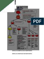 arquivo-manual-hemoterapia