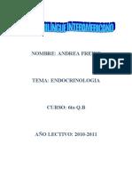 Endocrinologa