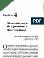 Biotransformação de Agrotóxicos e Biorremediação (Silva, Melo e Say)