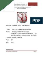 BIOSEGURIDAD- HONGOS BACTERIAS MICROSCOPIO