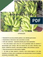 banana_10
