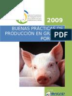 BP PRODUCCION GRANJAS PORCINAS