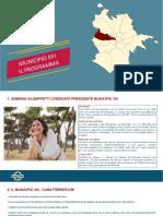 13_Municipio_Programma