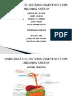 FISIOLOGIA DEL APARATO DIGESTIVO Y SUS ORGANOS ANEXOS