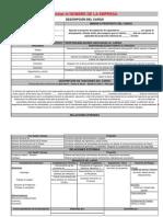 6 - Descripción Cargo Proyectos