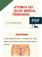 Aula 2 - Anatomia e Histologia Do Aparelho Reprodutor Feminino