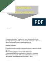 05) endocrino_2007-08