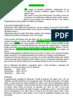 Lezione 14 (02-05-07) Fisiopatologia