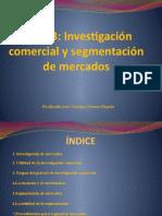 Tema 3 La investigación comercial y segmentación de mercados-Cristina Gómez Espejo