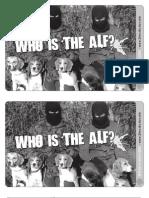 ALF Leaflet Biteback