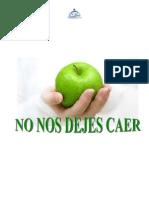 No_nos_dejes_caer