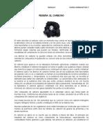 Reseña Quimica el carbono Maria Angelica Poveda