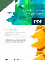 SISTEMA D INFORMACION TIPOS