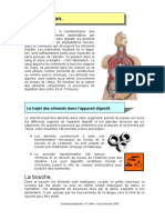 Cours Digestion