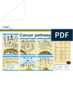 cancer_poster_840x552