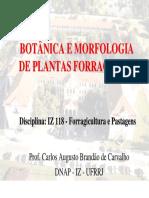 Aula_2_-_Morfologia_IZ_118